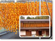 今は懐かしい市田柿の「柿のれん」