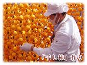 市田柿の柿羊羹1